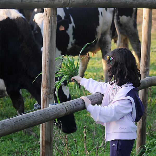 visites guiades a la granja ecològica la Selvatana