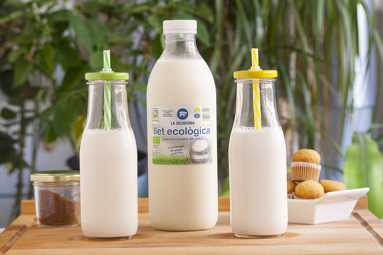 leche pasteurizada ecológica embotellada de las vacas de selvatana